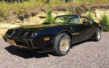 1979 Pontiac Firebird for sale 100912017