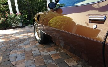 1979 Pontiac Trans Am for sale 100775044