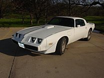 1979 Pontiac Trans Am for sale 101034314
