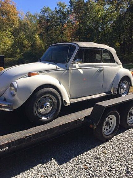 1979 Volkswagen Beetle for sale 100927559