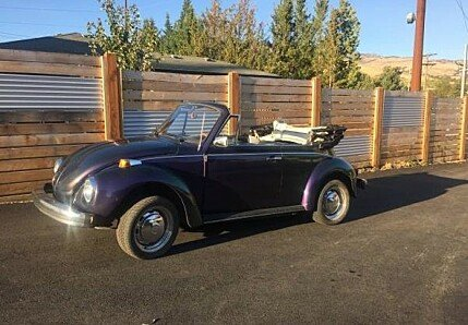 1979 volkswagen Beetle for sale 101007605