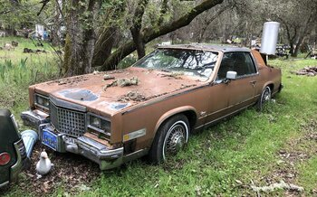 1980 Cadillac Eldorado Coupe for sale 100968373