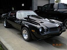 1980 Chevrolet Camaro for sale 100779243