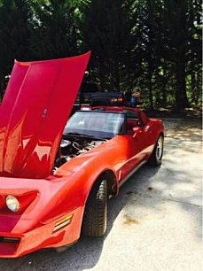 1980 Chevrolet Corvette for sale 100830069