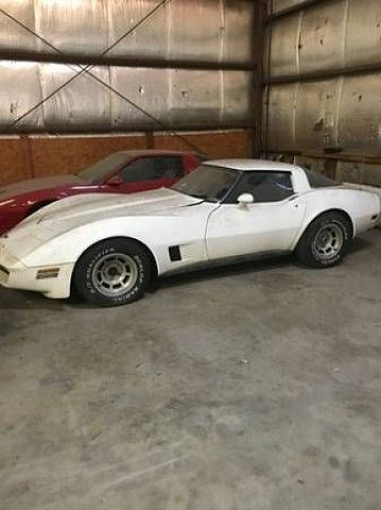 1980 Chevrolet Corvette for sale 101028898