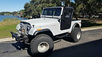1980 Jeep CJ-7 for sale 100863515