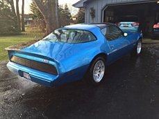 1980 Pontiac Firebird for sale 100840738