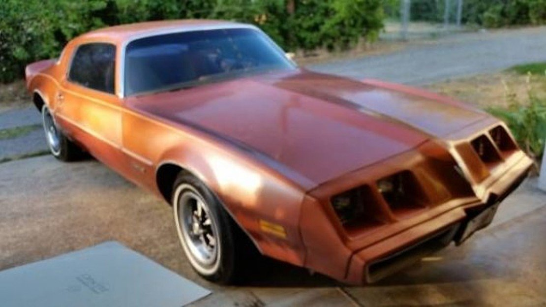 1980 Pontiac Firebird for sale 100908209