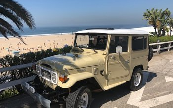 1980 Toyota Land Cruiser for sale 100994888