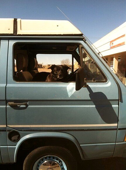 1980 Volkswagen Vanagon for sale 100838635