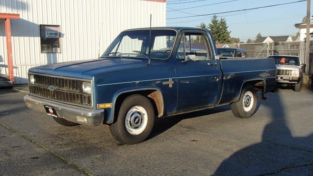 1981 Chevrolet C/K Truck 2WD Regular Cab 1500 for sale 100919557