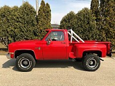 1981 Chevrolet C/K Truck 2WD Regular Cab 1500 for sale 100974413