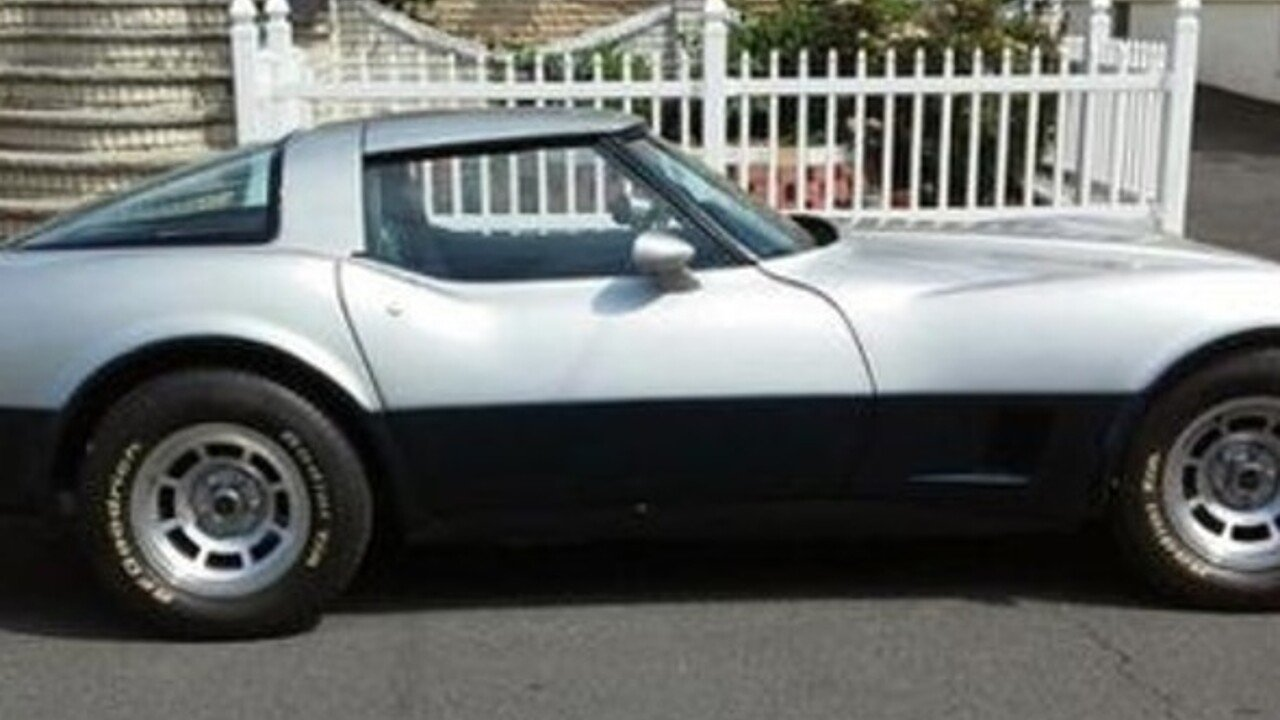 1981 Chevrolet Corvette for sale 100816307