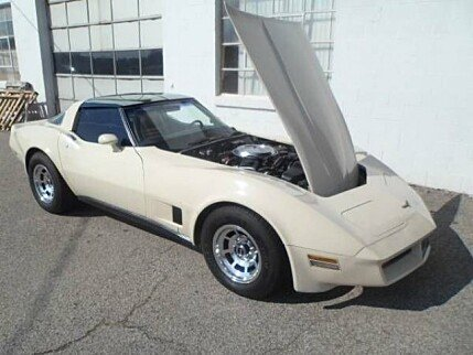 1981 Chevrolet Corvette for sale 100843318