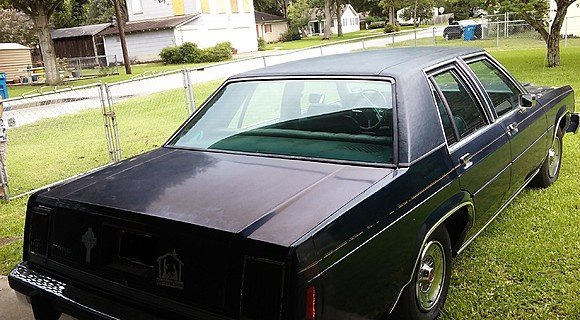 1981 Ford LTD Sedan for sale 100955214