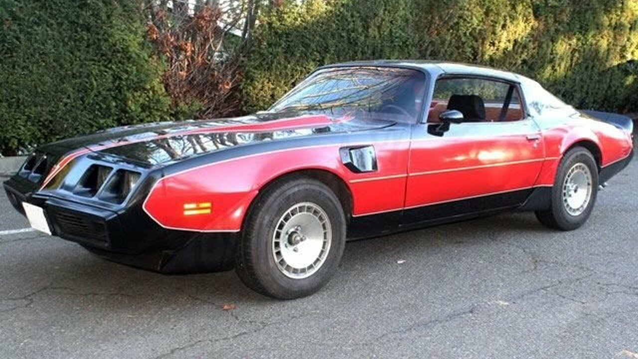 1981 Pontiac Firebird for sale 100942325