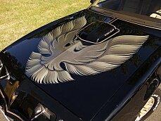 1981 Pontiac Firebird Trans Am for sale 100840027