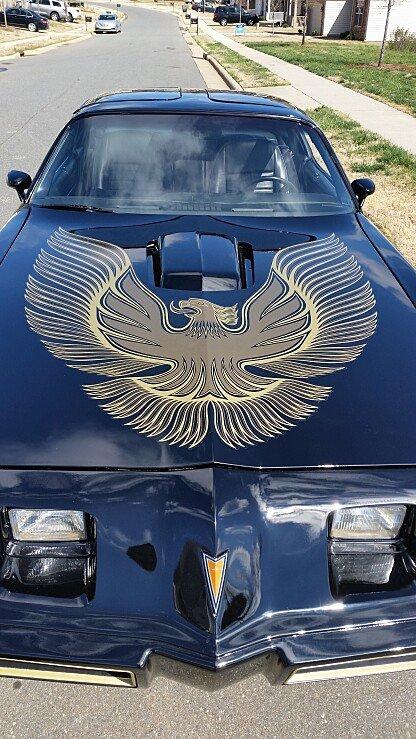 1981 Pontiac Firebird Trans Am for sale 100880102
