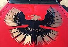 1981 Pontiac Firebird Trans Am for sale 100915286