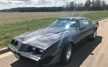 1981 Pontiac Firebird Trans Am for sale 100993787