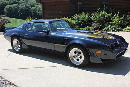 1981 Pontiac Firebird Trans Am for sale 101004857