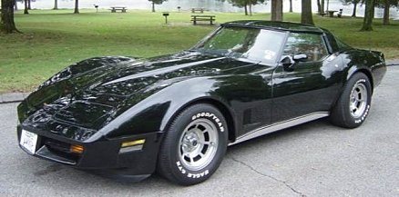 1981 chevrolet Corvette for sale 101029021