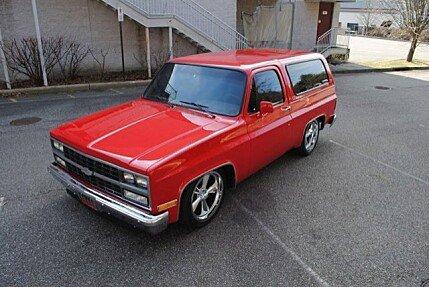 1982 Chevrolet Blazer for sale 100846244