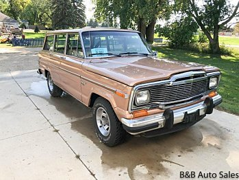 1982 Jeep Wagoneer for sale 101025649