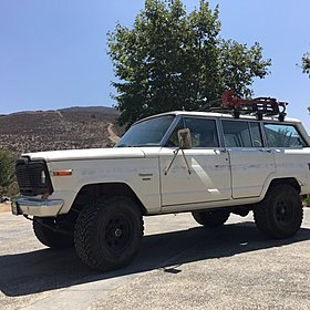 1982 Jeep Wagoneer for sale 100774564