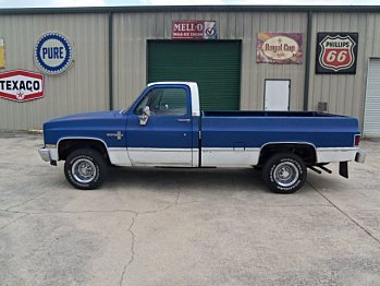 1982 chevrolet C/K Truck 4x4 Regular Cab 1500 for sale 100997912