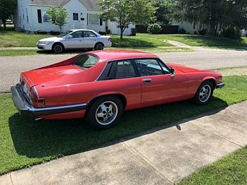 1983 Jaguar XJS for sale 100955812