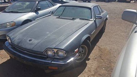 1984 Jaguar XJS for sale 100827511