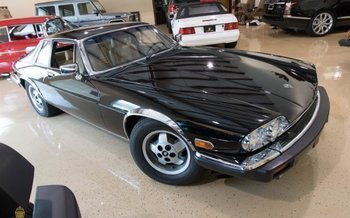 1984 Jaguar XJS V12 Coupe for sale 100884800