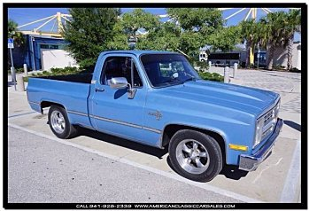 1985 Chevrolet Silverado and other C/K1500 2WD Regular Cab for sale 100821199