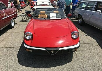 1986 Alfa Romeo Spider for sale 100986875