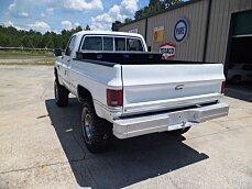 1986 Chevrolet Custom for sale 100790322