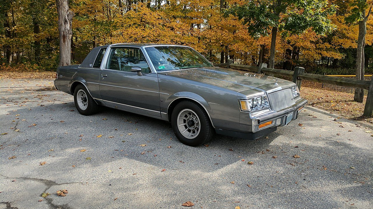 1987 Buick Regal Limited Coupe for sale 100971304