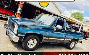 1987 Chevrolet C/K Truck 2WD Regular Cab 1500 for sale 101003650