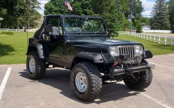 1987 Jeep Wrangler for sale 100973599