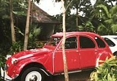 1988 Citroen 2CV for sale 100979361
