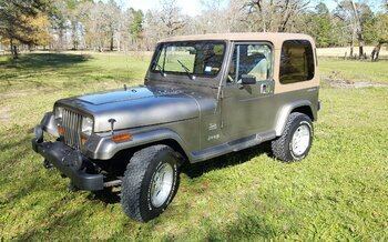 1988 Jeep Wrangler 4WD Sahara for sale 100747675