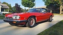 1989 Jaguar XJS V12 Convertible for sale 101036421
