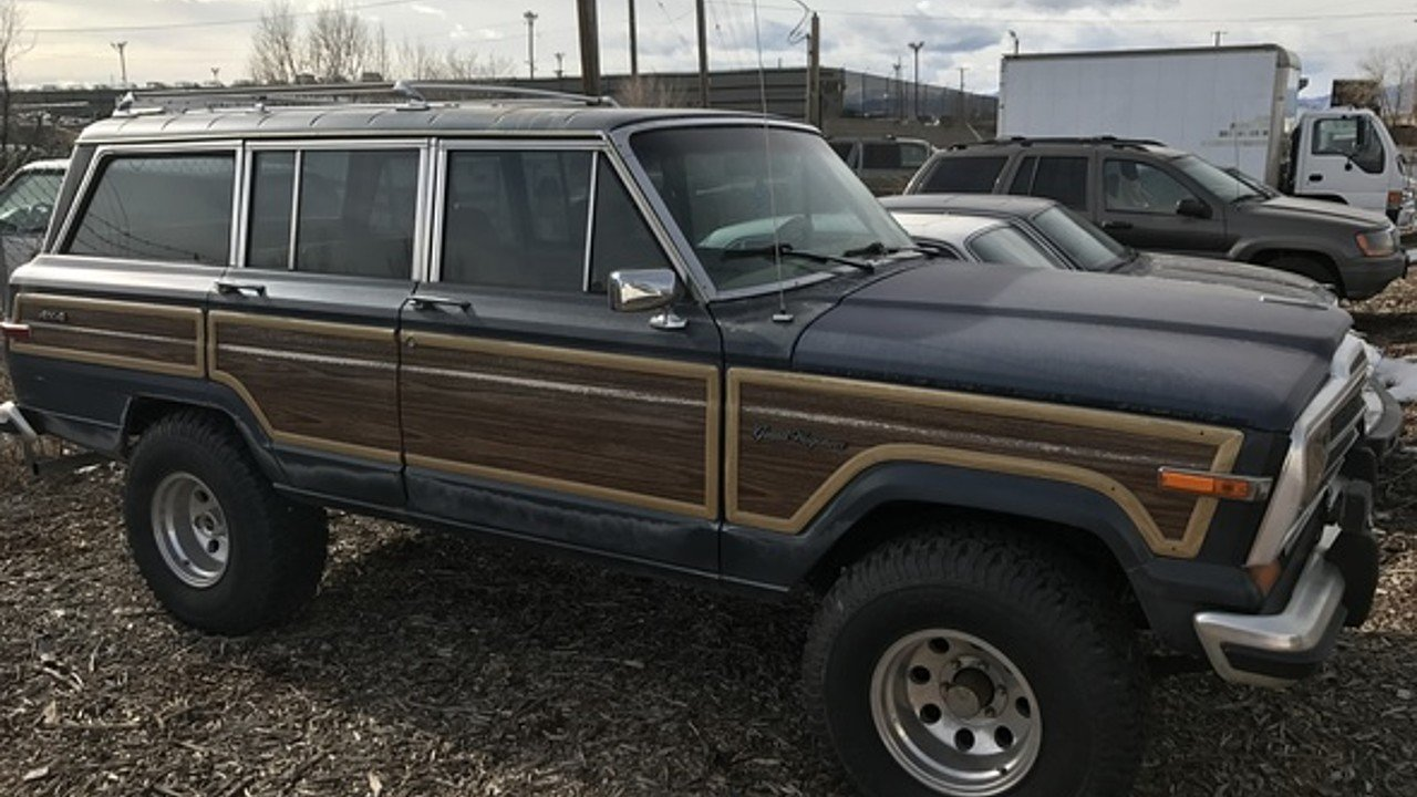 1989 Jeep Wagoneer for sale 100842030