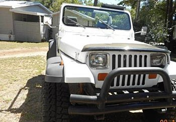 1990 Jeep Wrangler for sale 100791581