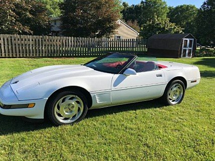 1995 Chevrolet Corvette Convertible for sale 100996623