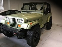 1995 Jeep Wrangler 4WD Rio Grande for sale 100960712