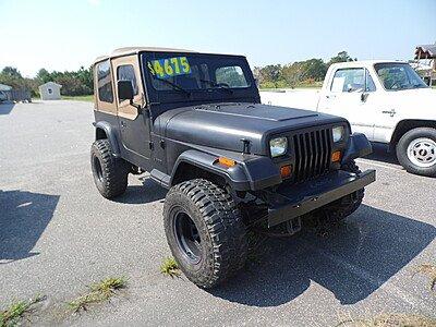 1995 Jeep Wrangler 4WD Rio Grande for sale 100910626