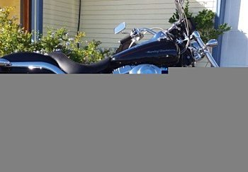 2001 Harley-Davidson Softail for sale 200424254