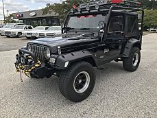 2002 Jeep Wrangler for sale 100979416