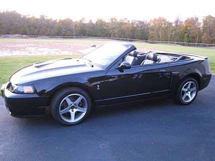 2003 Ford Mustang Cobra Convertible for sale 100820612